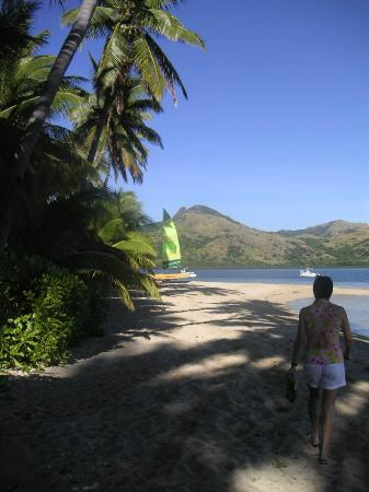 Nukubati Private Island: Nukubati Beach
