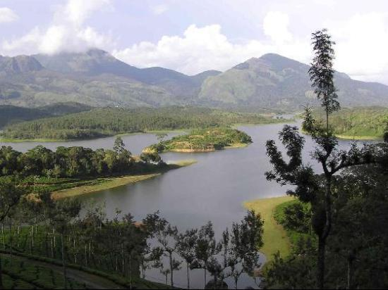 Munnar the nature