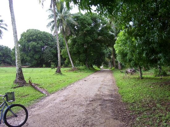 Etu Moana : And fun bike rides in the interior.