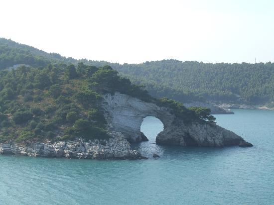 Hotel Mediterraneo : Vieste coactline