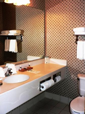 Country Inn & Suites By Carlson, Annapolis: Bath room