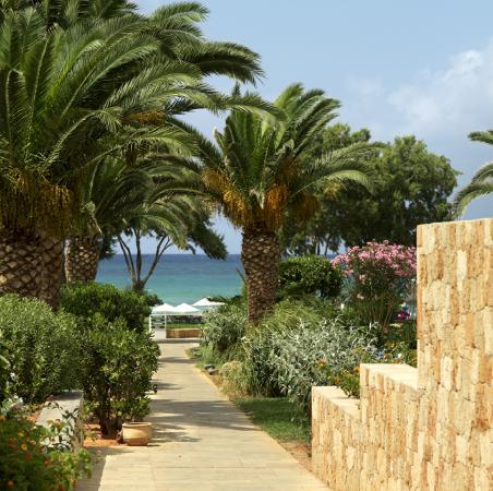 Kernos Beach Hotel : gardens