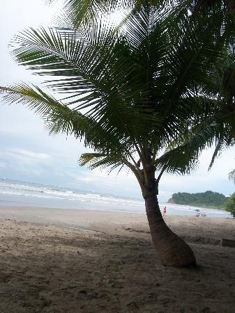 Hotel Esperanza: The Beach at Carrillo