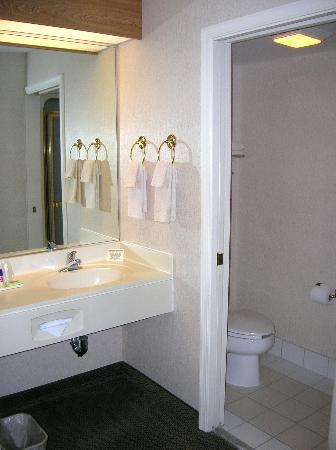 Sleep Inn: View of Sink Area