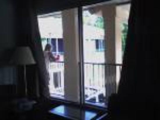 Meridian, MS: Open windows for light...get no privacy!