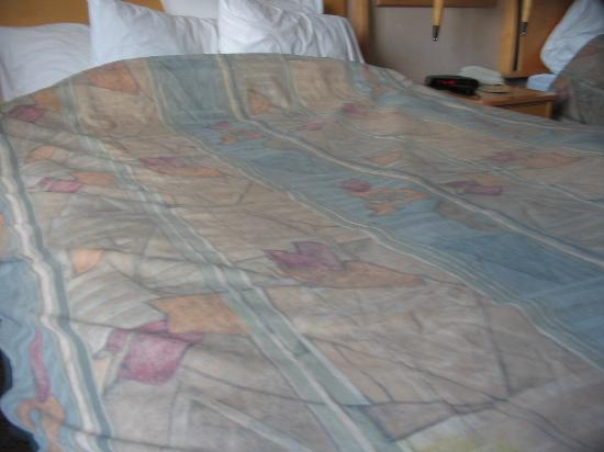 Holiday Inn West Kelowna: beds