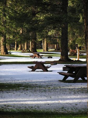 Fintry Estate & Provincial Park: Campsites in Winter