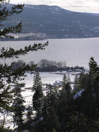 Fintry Estate & Provincial Park: View of the lake from Shorts Creek Canyon Trail