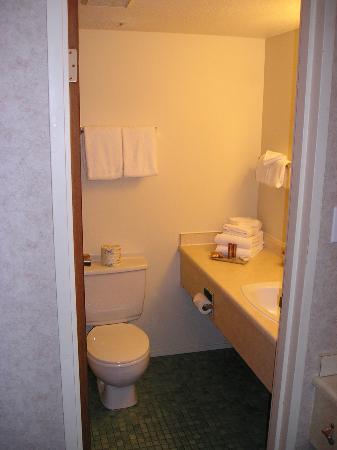 Sandman Hotel Penticton: Bathroom