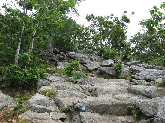Mount Battie: Going up
