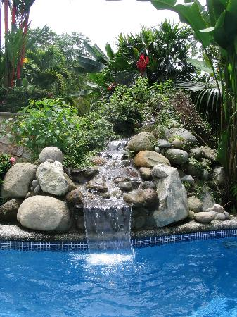 Casi el Cielo Bed and Breakfast : The pool and waterfall