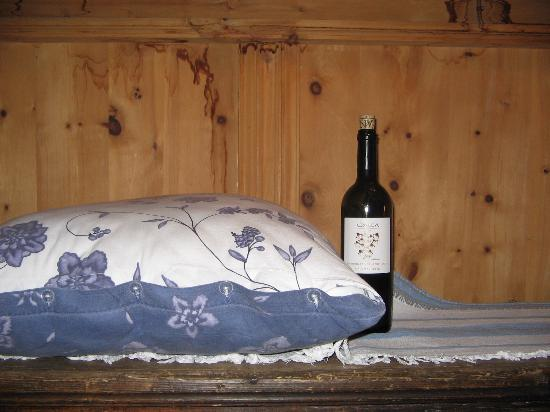 """""""Pillow"""" at Chasa de Capol with wine bottle reference"""