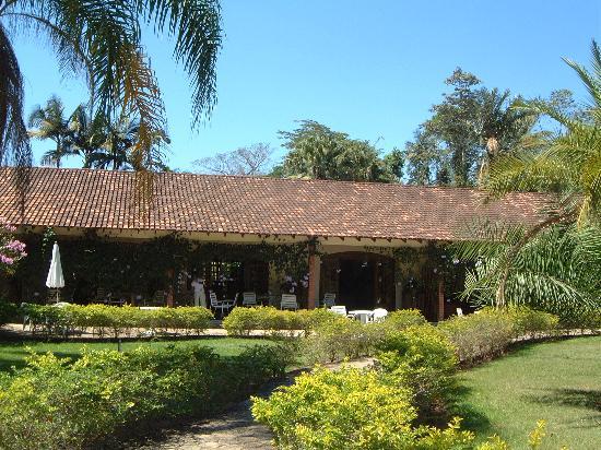Alta Floresta Photo