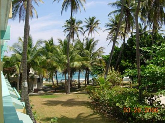 Costa Dorada Beach Resort: hotel grounds