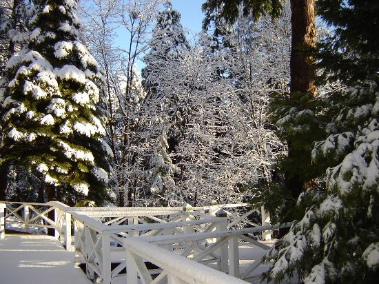 snow covered balcony picture of narrow gauge inn fish. Black Bedroom Furniture Sets. Home Design Ideas