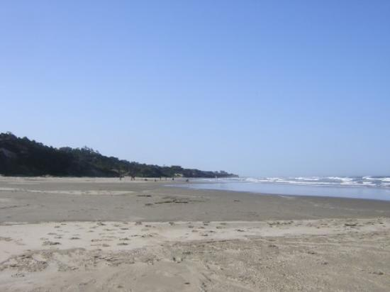 Best Western Agate Beach Inn: Agate Beach