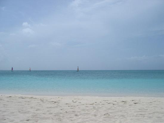 Alexandra Resort: Grace Bay Beach
