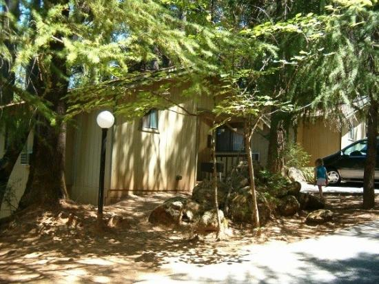Nevada City, Kalifornien: front view of cabin