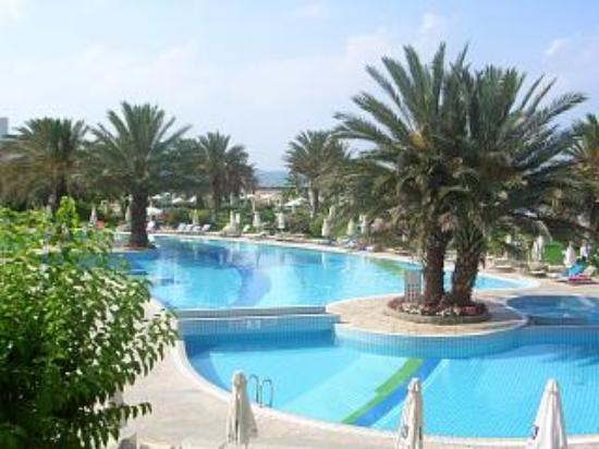 Constantinou Bros Athena Beach Hotel: Beautiful pool