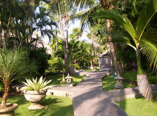 Aneka Beach Hotel: grounds
