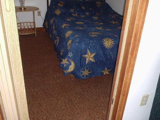 D'Allaire's Motel and Cottages: Outa date carpets in the bedrooms