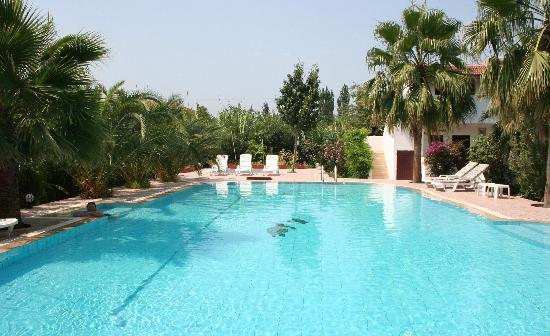 Dalyan Garden Pension : On very crowded days, there were 5 of us in the pool!