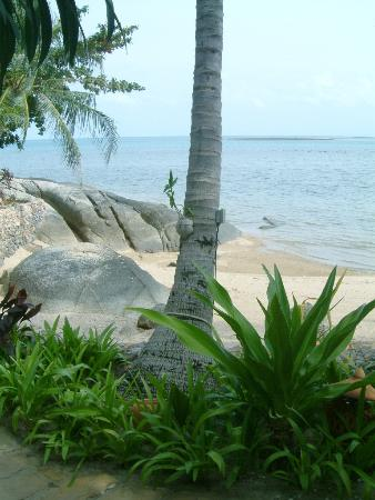 Rocky's Boutique Resort: View from our veranda