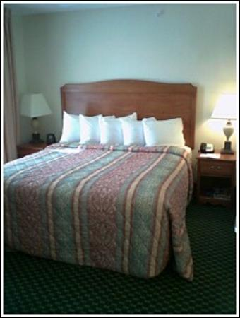 Homewood Suites by Hilton Corpus Christi Photo