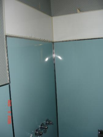 Homestead Motel and Cottages: This is the shower wall