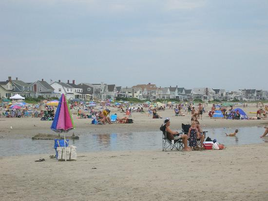 Lafayette's Oceanfront Resort: Wells beach at low tide