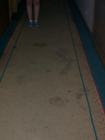 Baoding Center Hotel: Dirty Carpet
