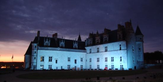 Hotel Le Manoir les Minimes : Amboise Castle at night