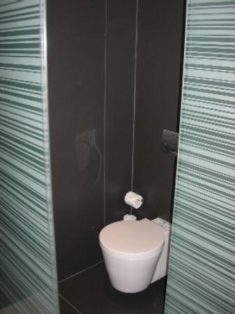 Olivia Plaza Hotel: The glass boxed toilet!