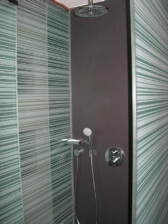 Olivia Plaza Hotel: The shower!