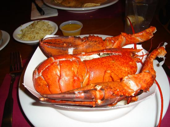 Ogunquit Lobster Pound Restaurant : The finished product ... a 1 1/2 pounder