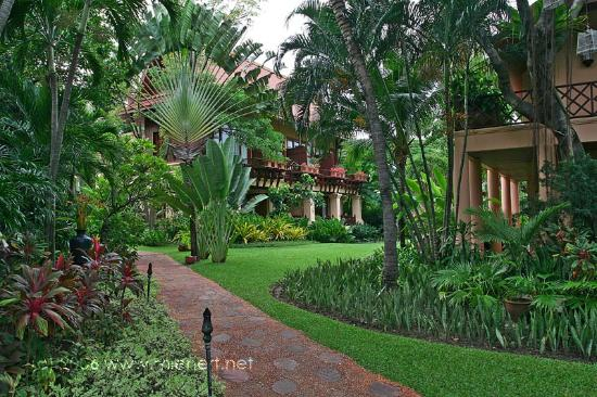 Anantara Hua Hin Resort: Anantara Garden View.