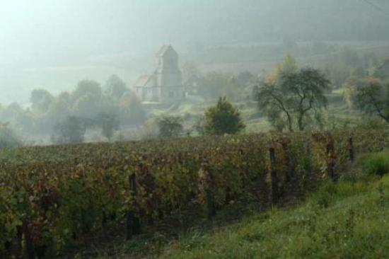 marne river valley is dotted with vineyards and medieval churches picture of chateau thierry. Black Bedroom Furniture Sets. Home Design Ideas