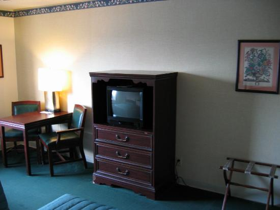 Guesthouse Inn & Extended Stay Suites: Hotel room view