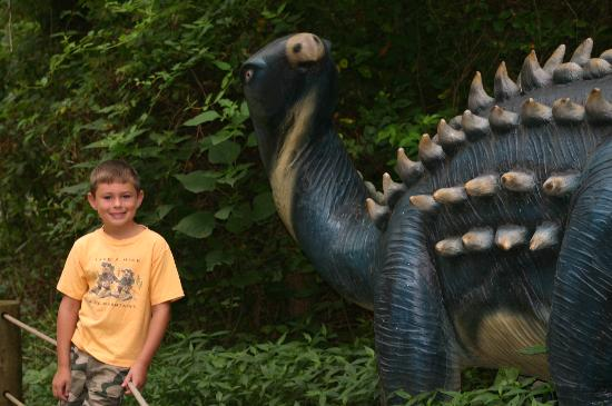 Dinosaur World Bild