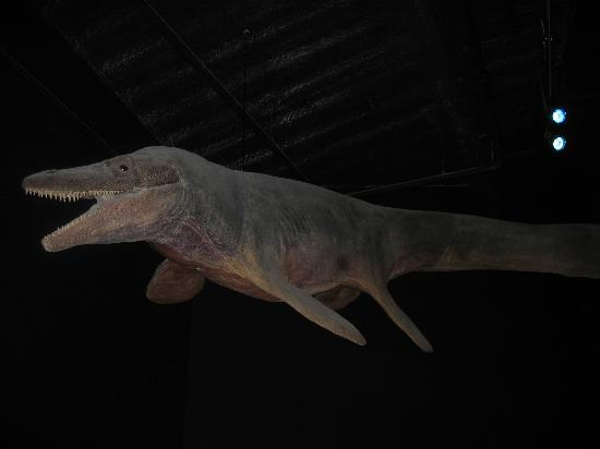 Mesa, AZ: Dino