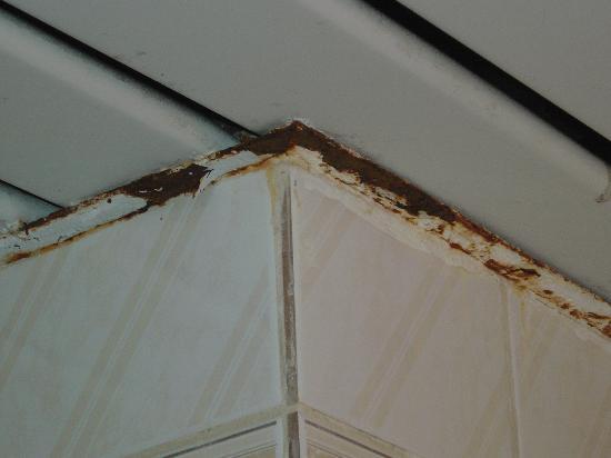 plafond de douche foto van les residences yucca le. Black Bedroom Furniture Sets. Home Design Ideas