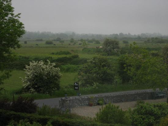 Bunratty Heights Bed and Breakfast: Even morning fog made for an absolutely beautiful view.  A great way to end our stay in Ireland