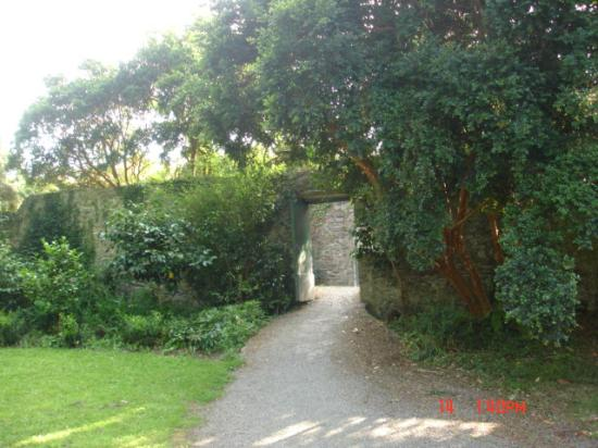 Glin Castle: Beautiful walled garden
