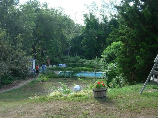 Country Acres Motel: Outdoor pool in the woods