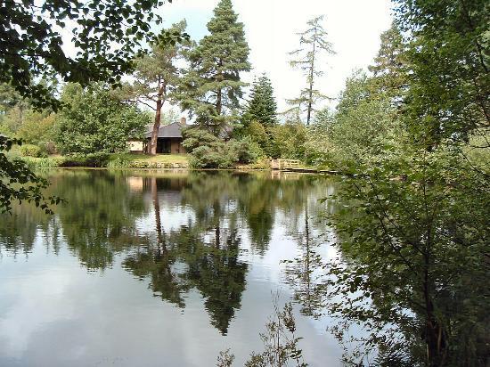 Slaley, UK: a quiet walk near the hotel lake