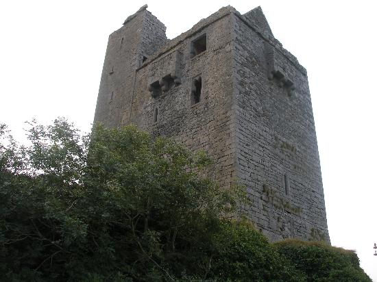 Ballinalacken Castle Country House : the castle