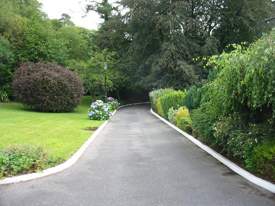 Weston House: Entry Drive