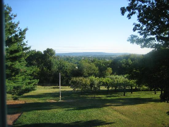 Country Vistas: The view from our window