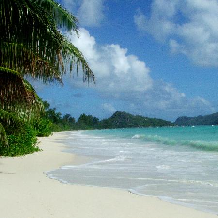 Les Villas d'Or: Anse Volbert: the beach