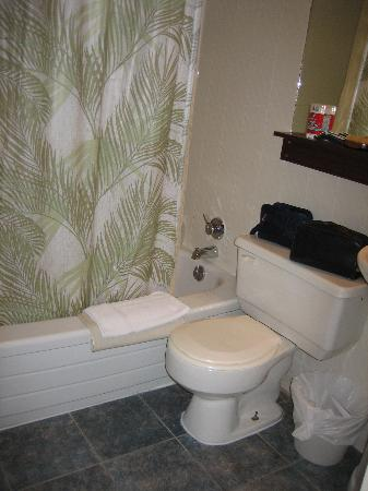 Hotel Le Saint Andre: bathroom